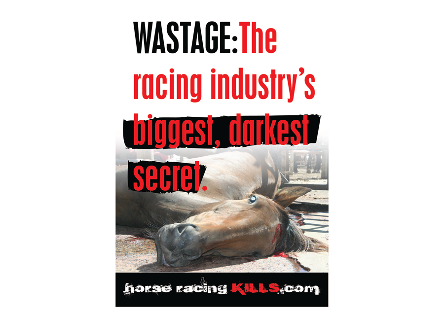 Wastage: The racing Industry's biggest, darkest secret
