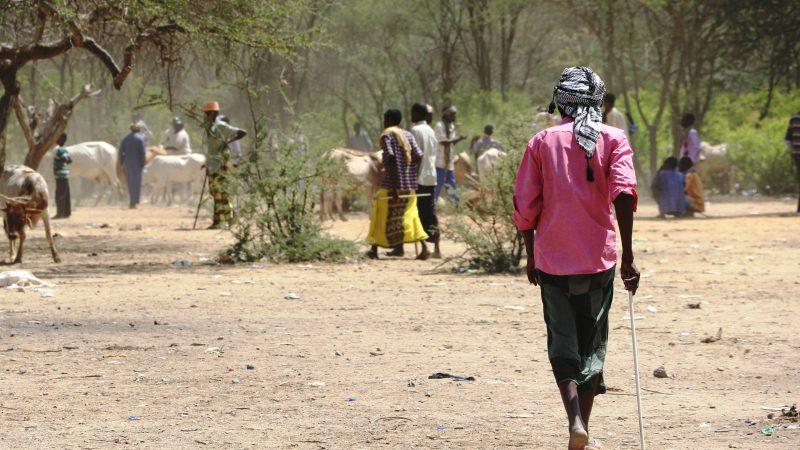 Photo d'une scène au quotidien dans le camp de réfugiés Dadaab