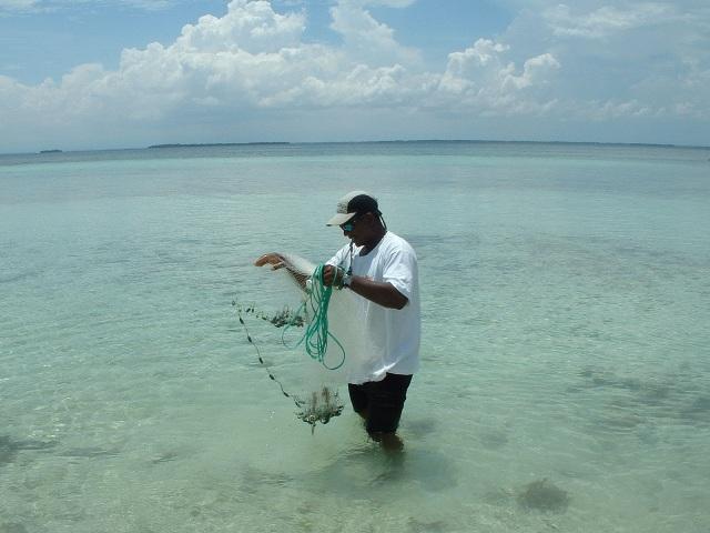 Un pêcheur récupère son filet qui contient plusieurs poissons.