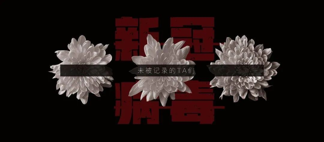 Gros plan de 3 fleurs de lotus alignées sur lesquelles une inscription chinoise est écrite en blanc sur un bandeau noir.