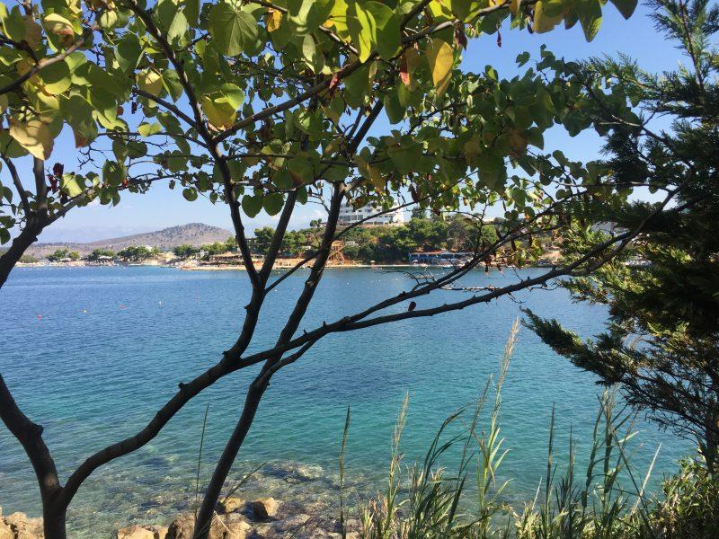 Une plage du sud de l'Albanie, vue à travers de branches d'arbre. L'eau est claire et on distingue des rochers.