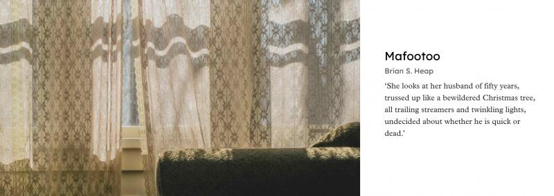 Le titre et le nom de l'auteur ainsi qu'un extrait occupent la droite de l'écran. A gauche, un salon dans la pénombre, avec des rideaux brodés et un canapé vert.