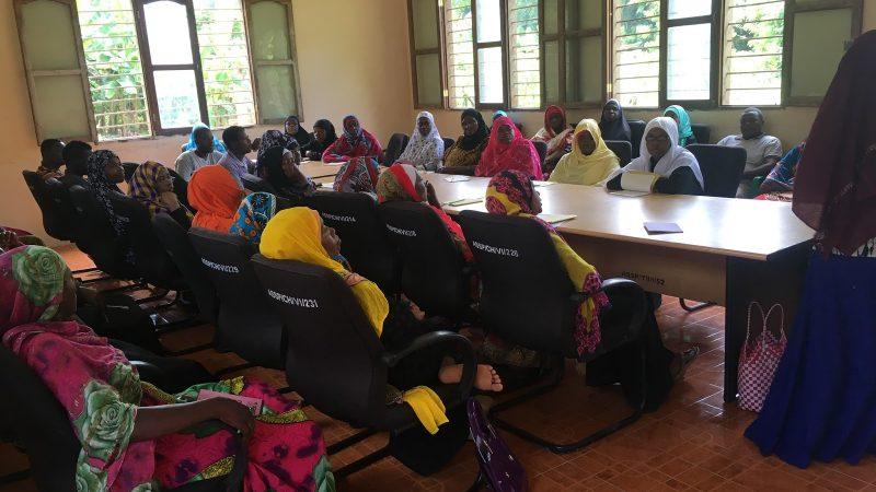 Un large groupe de femmes tanzaniennes assises en U autour d'une table assistent à une formation professionnelle.