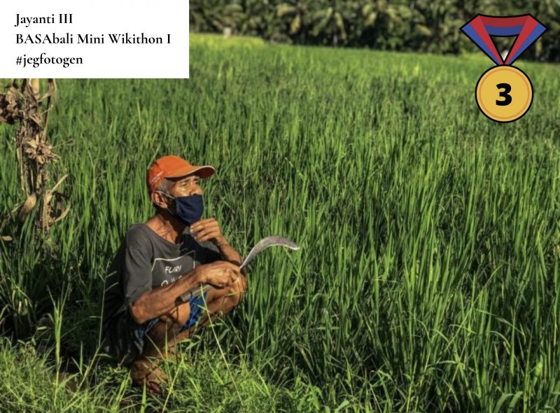 Photo couleur d'un vieil homme accroupi dans l'herbe et portant un masque. Il tient une serpe à la main.