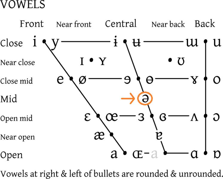 Le schwa, un e inversé, est une voyelle centrale d'ouveture moyenne.