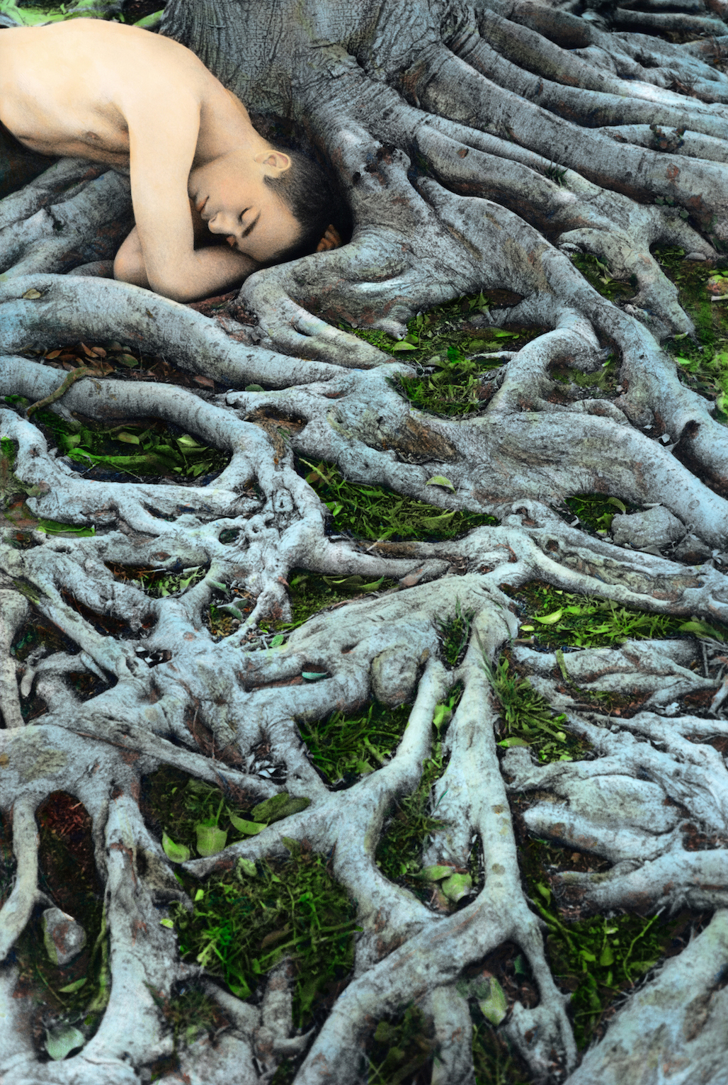 Self Portrait with Roots, Los Angeles 2008 copy