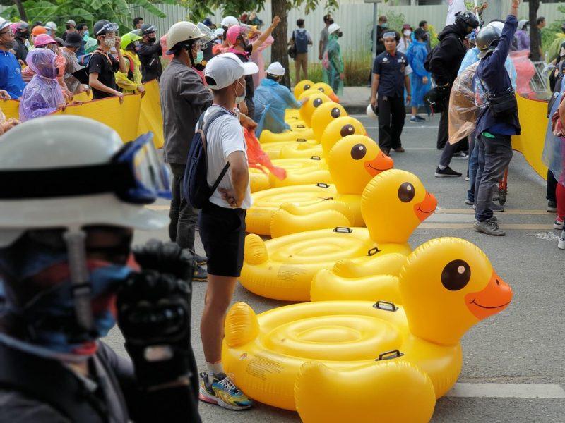 L'image est composée de manifestants accompagnés de gigantesques canards en plastiques, devant eux. Tous portent masque et casque. Ils sont dans la rue à l'arrêt.