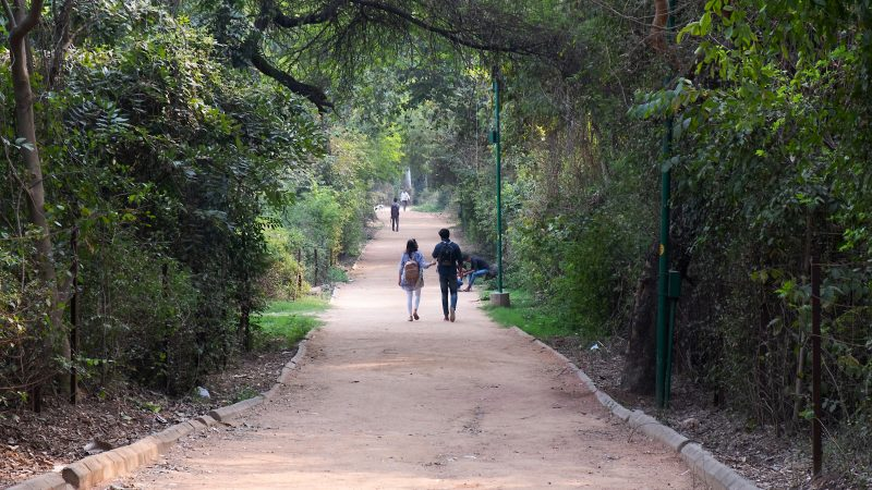 Young couple walk down a quiet path in Delhi park surrounded by green trees