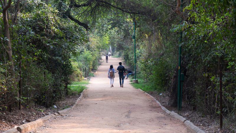 Une jeune fille et un jeune homme marchent en se tenant la main dans un parc.
