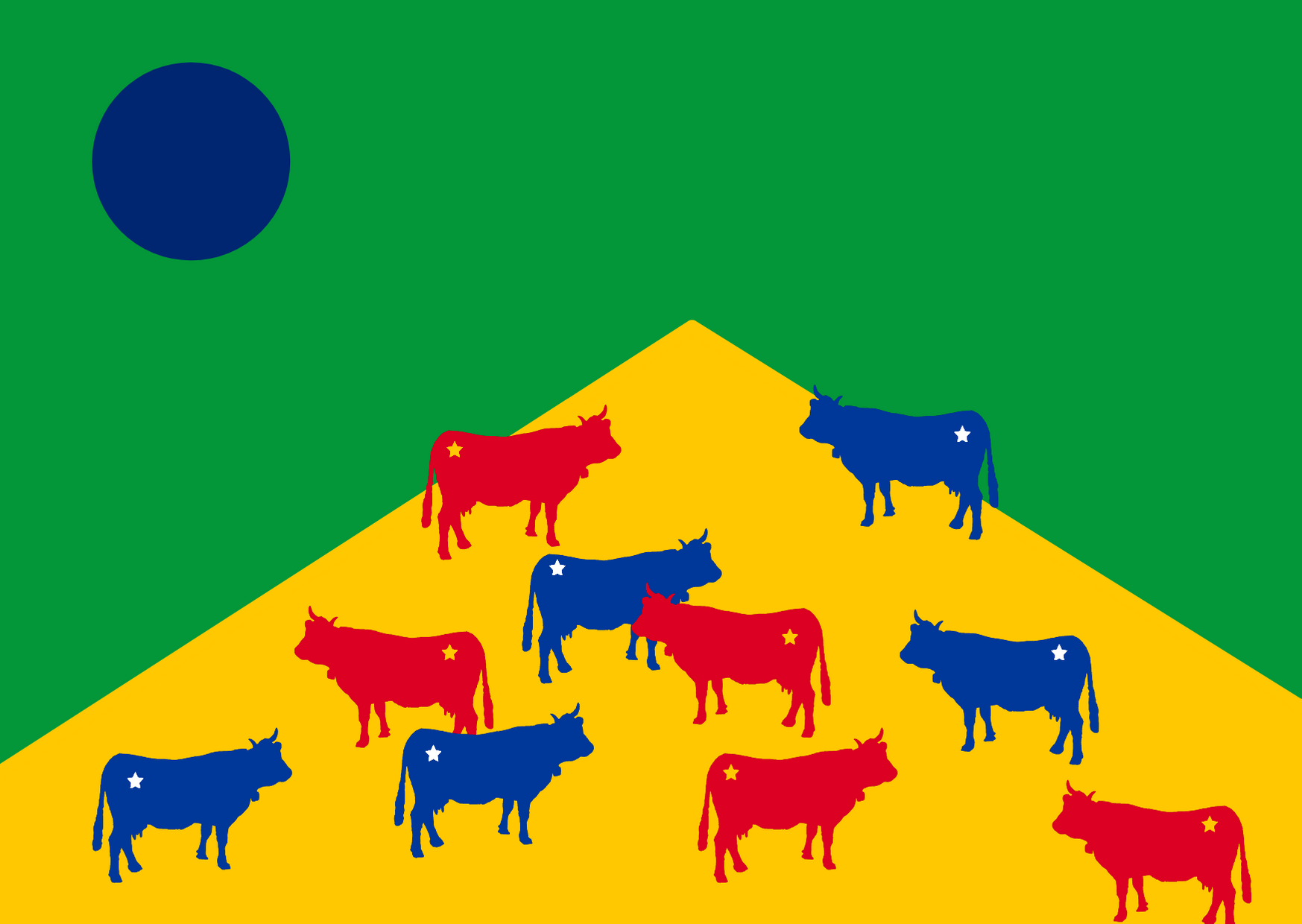 In 2020, Brazilian beef accounted for 43 percent of all meat imported by Chinese consumers | Image: Giovana Fleck/Global Voices