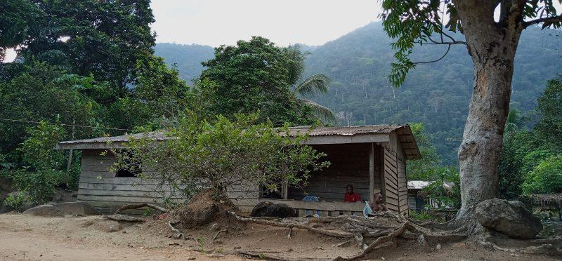 Дерев'яний будинок із залізною кришею знаходится на узліссі.
