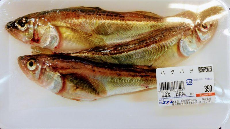 Hata-hata, my least favourite fish