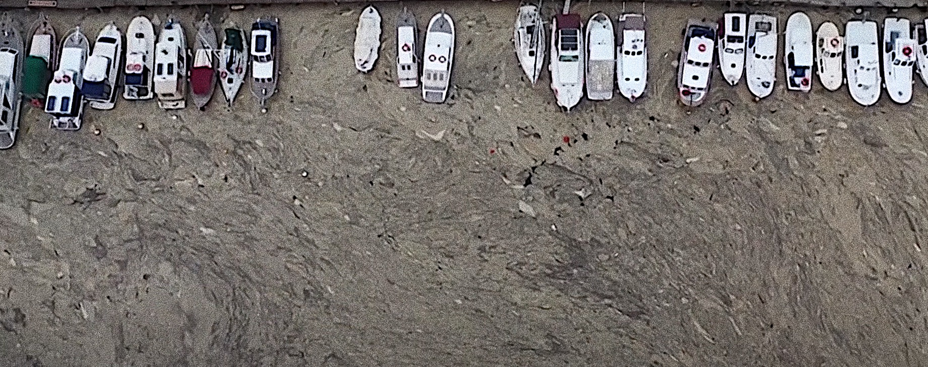 """Marmara Sea covered by """"sea snot"""", with possible dangers to environment"""