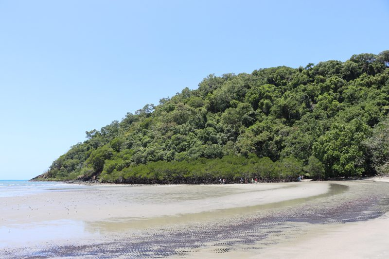 Cape Tribulation Beach, Daintree National Park, Australia