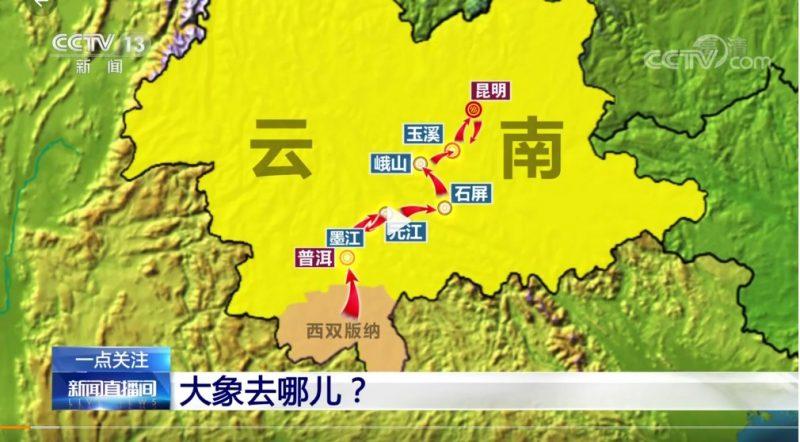 Carte de la province de Yunnan. Des flèches indiquent le parcours des éléphants : d'abord en direction du nord, puis en direction du sud.