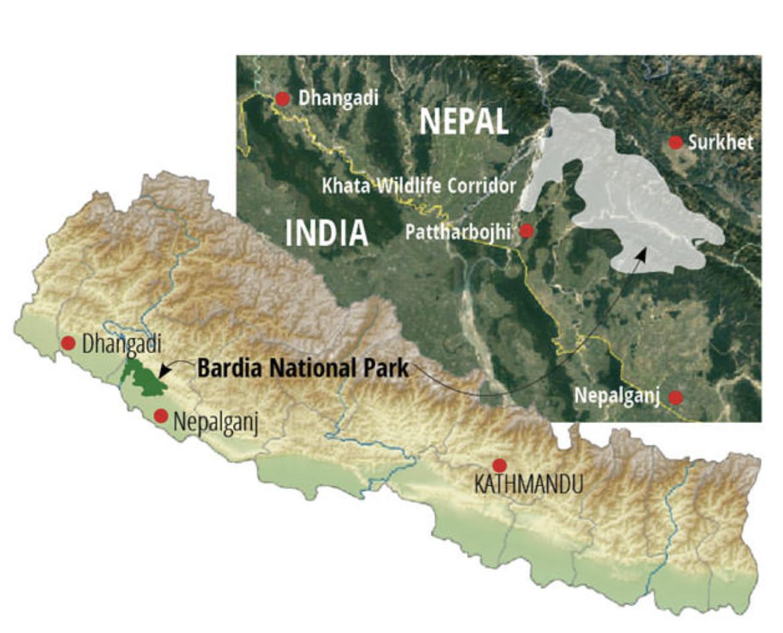 Image via Nepali Times.