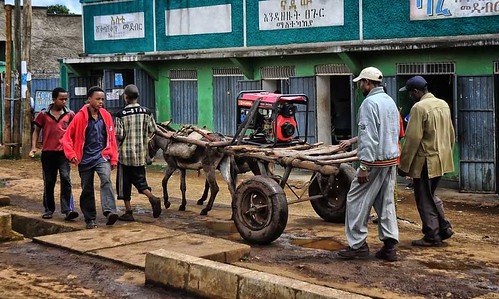 """""""Donkey Power, Ethiopia"""" by Rod Waddington is licensed under CC BY-SA 2.0"""