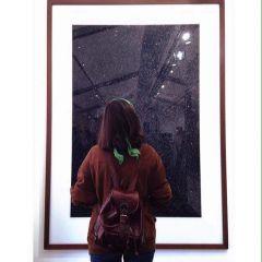 Un pequeño retrato de Ilaria Grasso Macola
