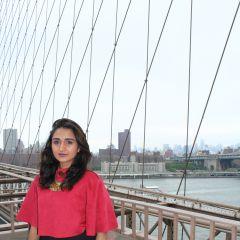 Σύντομο βιογραφικό Annam Lodhi